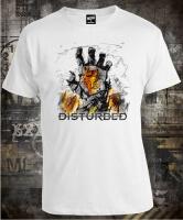 Disturbed Smolder