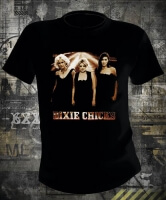 Dixie Chicks Long Road