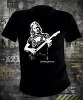 Футболка Pink Floyd David Gilmour