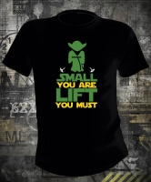 Футболка Star Wars Small You Are lift You Must Yoda